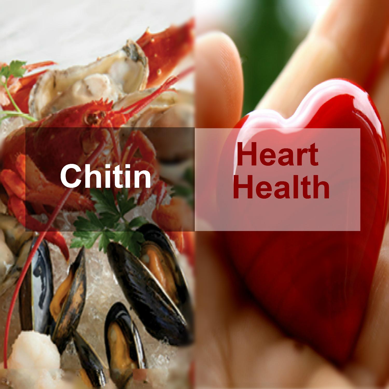 OCE_Website_Red_Crab_11_1_17_meitu_96_meitu_98
