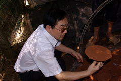 PROFESSOR VIEW THE BASE OF GANODERMA LUCIDUM